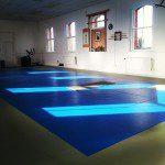 Balance BJJ Aikido MMA Yoga in Dublin